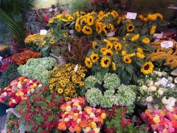 オランダ花市場3.jpg