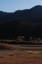 昭和村2.jpg