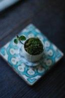 盆栽.jpg