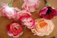 blooming02.jpg