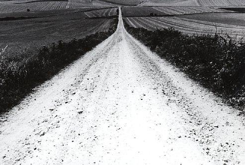 caminostorada.jpg